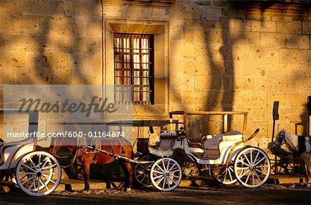 Voitures à chevaux, Guadalajara, Mexique