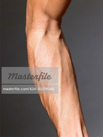 Venen auf einem Arm mans - Stockbilder - Masterfile - Premium RF ...