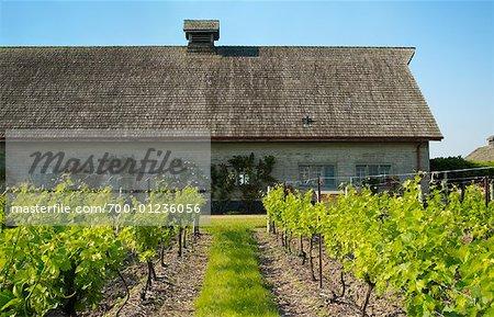 Inniskillin Winery, Niagara-on-the-Lake, Ontario, Canada