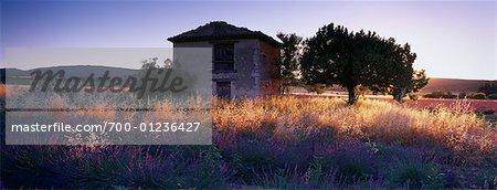 Grange, Provence, France