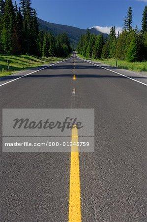 Road, comté de Hood River, Oregon, Etats-Unis