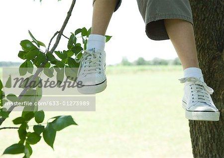 Enfant assis dans l'arborescence, recadrée vue, genou vers le bas