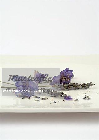 Brins de lavande séchée et fleurs sur plat