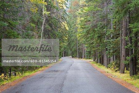 Road in Autumn, Banff National Park, Alberta, Canada
