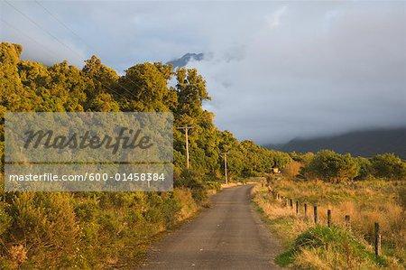 Te Taho, Westland, South Island, Nouvelle-Zélande