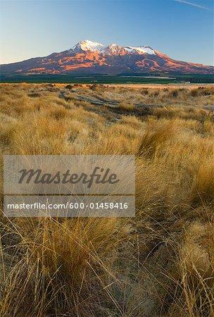 Mount Ruapehu and Ngauruhoe, Tongariro National Park, North Island, New Zealand