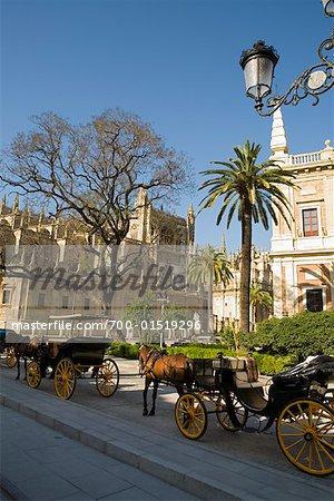 Calèches en face de la cathédrale, Séville, Espagne