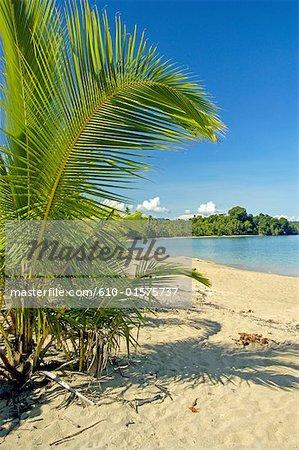 Costa Rica, Caribbean coast, beach