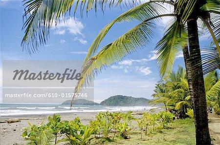Costa Rica, le paysage de la côte du Pacifique