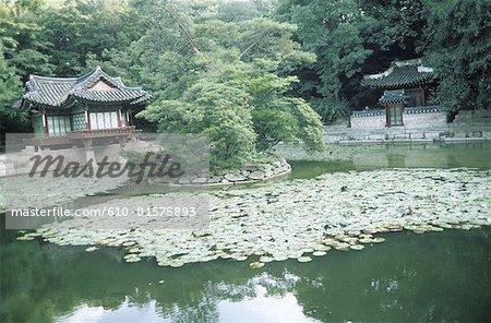 Corée du Sud, Séoul, Changdokkung palace, le Jardin Secret