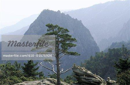 Corée du Sud, les montagnes Sorak