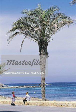 Espagne, Iles Baléares, Formentera, Es Pujols, palmier