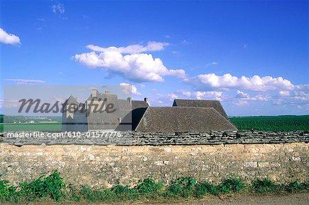 France, Bourgogne, Clos Vougeot, le château et vignoble