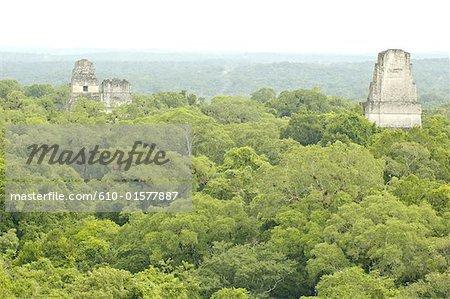 Guatemala, Tikal National Park, top of the Temple of the Jaguar