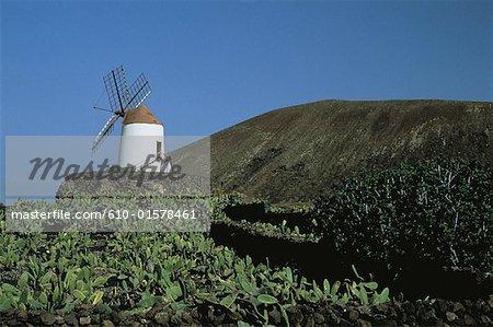 Espagne, Iles Canaries, Lanzarote, jardin de cactus, moulin à vent