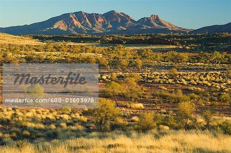 Territoire du Nord Mt Sonder, West MacDonnell National Park, Australie