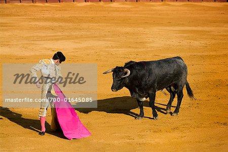 Matador and Bull in Bullfighting Ring,