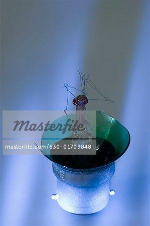 Close-up of a broken light bulb