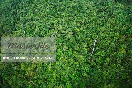 Vue aérienne de la chute d'eau, Mont Machincang, l'île de Langkawi, Malaisie