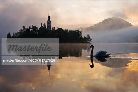 Église de l'Assomption, le lac de Bled, Slovénie
