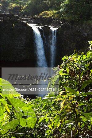 Chute d'eau dans une forêt, Rainbow Falls, Hilo, archipel de Big Island, Hawaii, USA