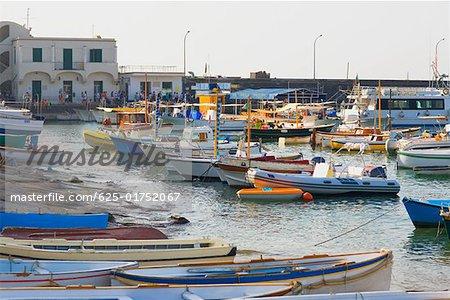 Bateaux à quai dans un port, Marina Grande, Capri, Campanie, Italie