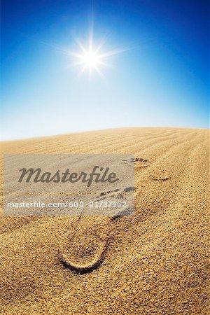 Empreintes dans le sable du désert