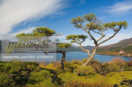 Ashinoke et le Mont Fuji, Hakone, Honshu, Japon