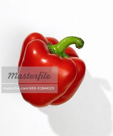 Un poivron rouge