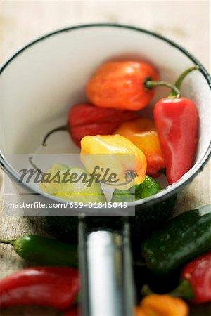 Divers chili peppers dans pan