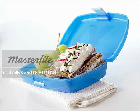 Lunch-Box mit weichen Käse-Sandwiches, Trauben und Radieschen
