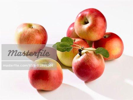 Plusieurs pommes fraîches