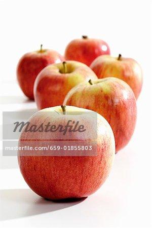 Six pommes « Gala »