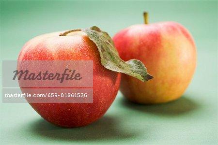 Deux pommes Elstar, une feuille