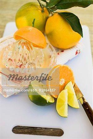 Limes, les clémentines, les oranges et les presse-agrumes citrus