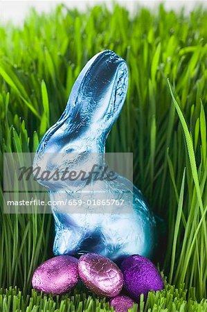 Lapin de Pâques et chocolat oeufs en herbe