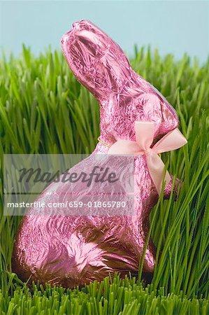 Lapin de Pâques en herbe