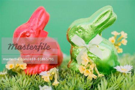 Lapins de Pâques rouge et vert dans l'herbe avec fleurs de printemps