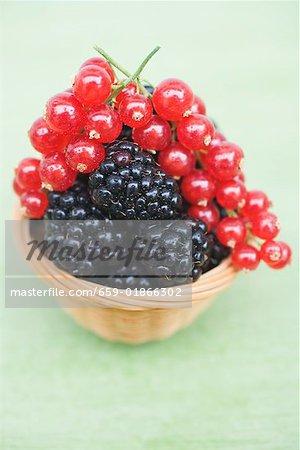 Blackberries and redcurrants in basket
