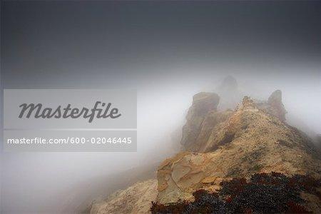 Nebel über Klippen, Nord Kalifornien, Kalifornien, USA