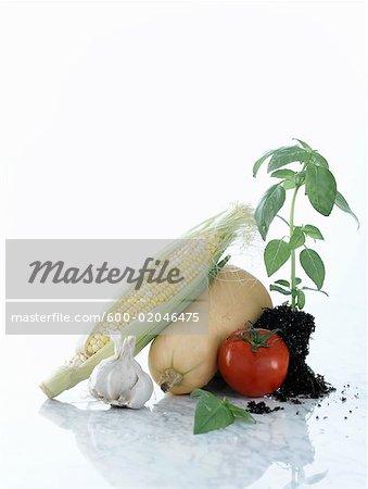 Stillleben mit Gemüse und Kräutern