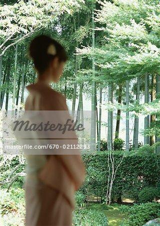 Jardin et Bosquet du bambou