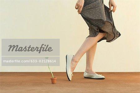 Femme qui marche à côté de la plante en pot, tenant la jupe, recadrée vue