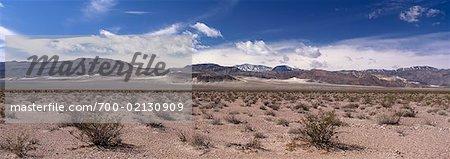 Plage de saline, Eureka Valley, comté d'Inyo, Death Valley, Californie, USA