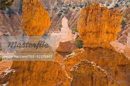 Parc National de Bryce Canyon, Utah, USA
