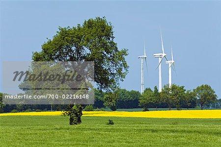 Éoliennes à Stoltenberg, Plon, Schleswig-Holstein, Allemagne