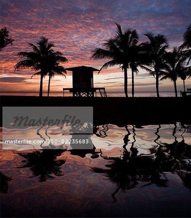Arbres et sauveteur Station reflétaient dans l'eau, Dania Beach, Floride, États-Unis