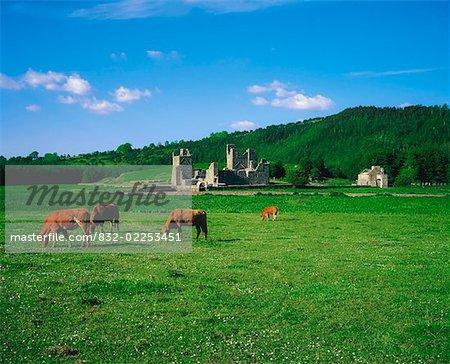 Fore abbaye, Co Westmeath, Irlande