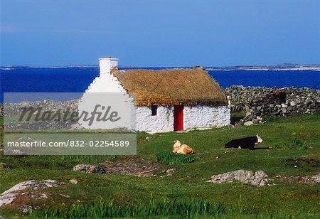 Près de Ballyconneely, Connemara, co. Galway, Irlande