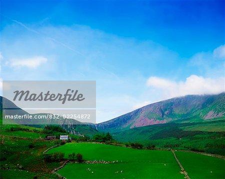 Owencashla, Near Castlegregory, Dingle Peninsula, Co Kerry, Ireland